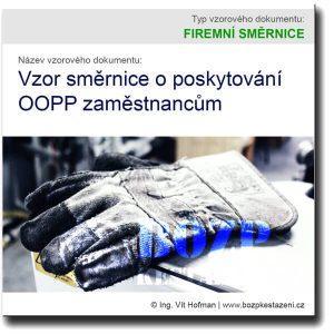 Vzor směrnice o poskytování OOPP zaměstnancům
